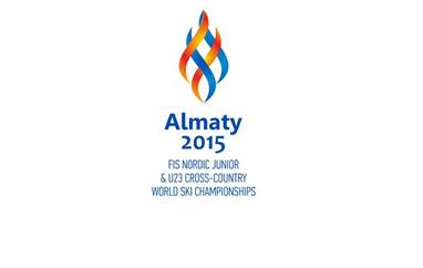 MŚJ Ałmaty: Norwegia ze złotym medalem, Polacy poza podium